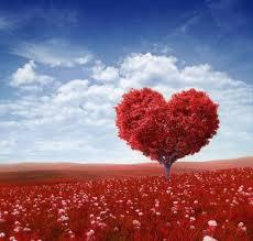 amore per la terra e il paesaggio