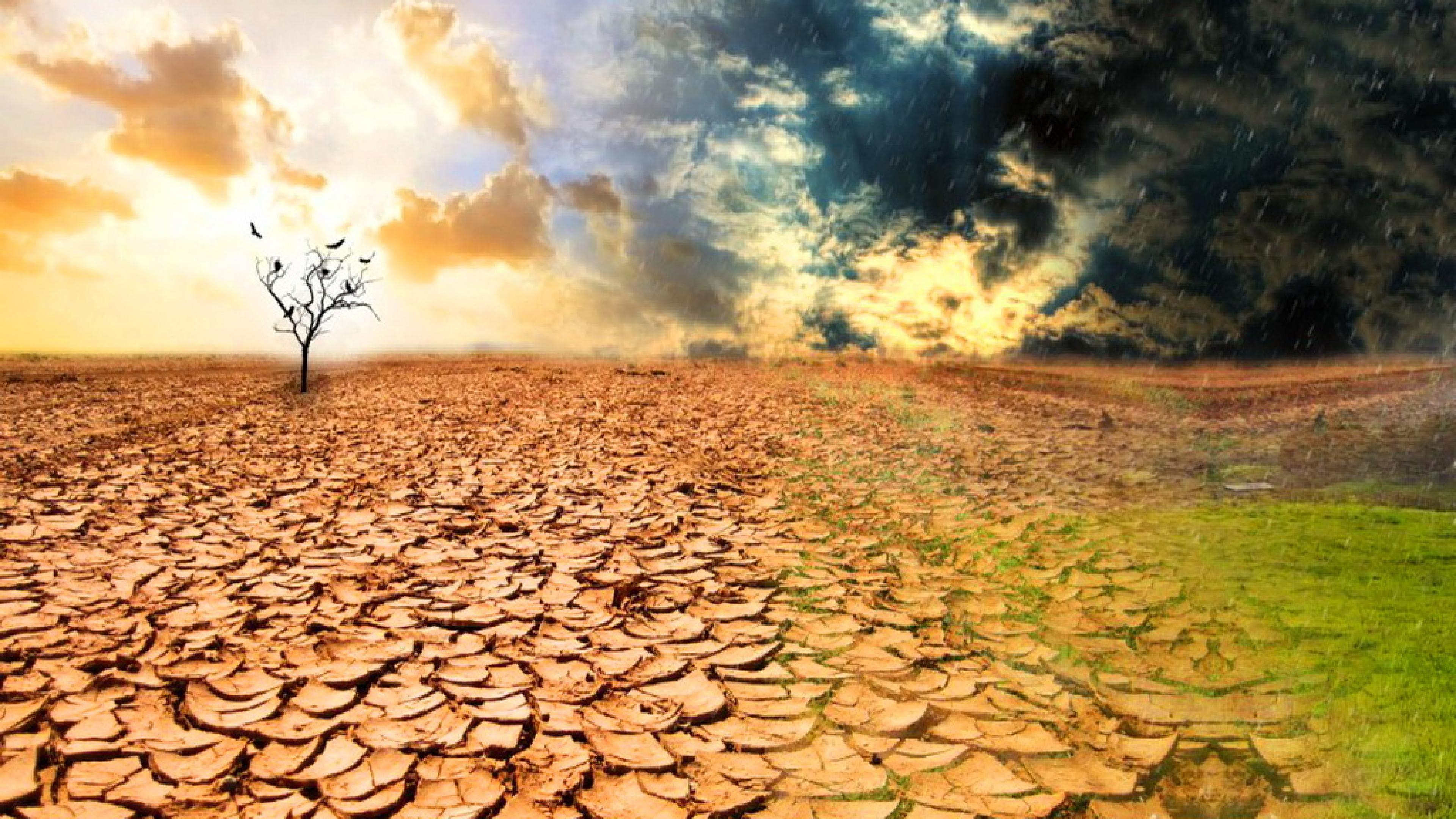deserto, desolazione, arido